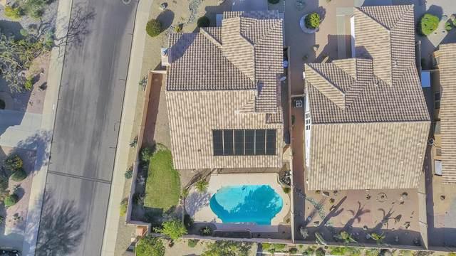 2311 E Mountain Vista Drive, Phoenix, AZ 85048 (MLS #6061128) :: Yost Realty Group at RE/MAX Casa Grande