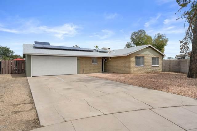 9211 N 52ND Drive, Glendale, AZ 85302 (MLS #6061161) :: Nate Martinez Team