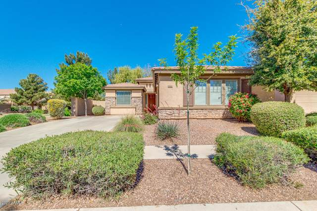 4240 S Fireside Trail, Gilbert, AZ 85297 (MLS #6061162) :: Revelation Real Estate