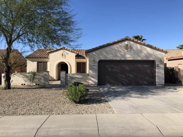 16301 W Kearney Lane, Surprise, AZ 85387 (MLS #6061177) :: Nate Martinez Team