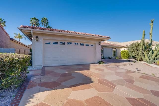 10937 E Sunnydale Drive, Sun Lakes, AZ 85248 (MLS #6061214) :: The Property Partners at eXp Realty