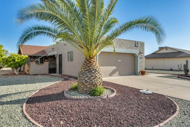 12411 W Allegro Drive, Sun City West, AZ 85375 (MLS #6061230) :: Nate Martinez Team