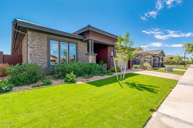2911 E Pinto Drive, Gilbert, AZ 85296 (MLS #6061243) :: Brett Tanner Home Selling Team