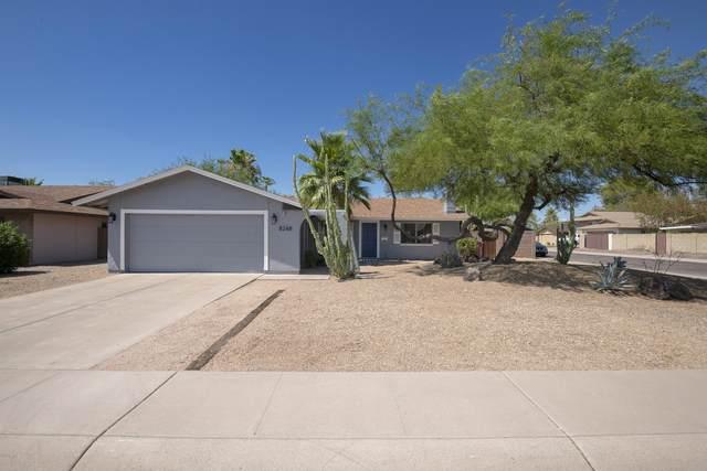 8248 E Montebello Avenue, Scottsdale, AZ 85250 (MLS #6061251) :: Brett Tanner Home Selling Team