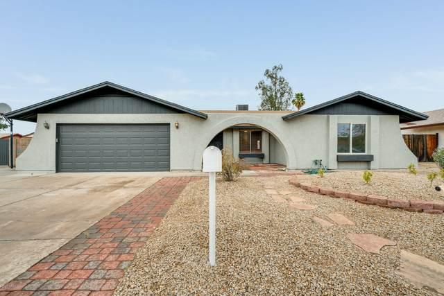 5744 W Greenbriar Drive, Glendale, AZ 85308 (MLS #6061297) :: Nate Martinez Team
