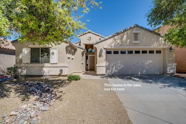 4162 E Amarillo Drive, San Tan Valley, AZ 85140 (MLS #6061310) :: Scott Gaertner Group