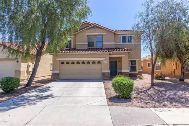 15315 W Cortez Street, Surprise, AZ 85379 (MLS #6061352) :: Nate Martinez Team