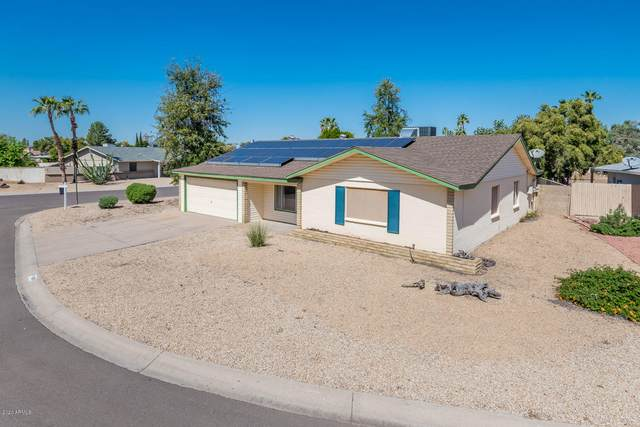 4308 W Sandra Circle, Glendale, AZ 85308 (MLS #6061360) :: Nate Martinez Team