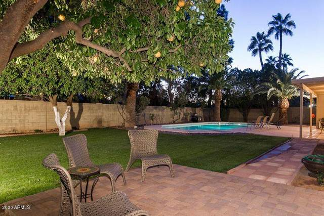 6511 E Camino Santo, Scottsdale, AZ 85254 (MLS #6061369) :: Riddle Realty Group - Keller Williams Arizona Realty