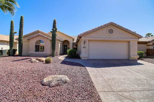 15311 W Piccadilly Road, Goodyear, AZ 85395 (MLS #6061382) :: Lucido Agency