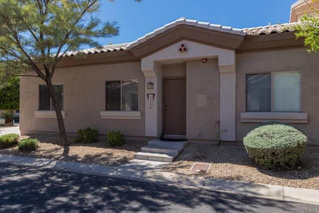 15684 N 79TH Lane, Peoria, AZ 85382 (MLS #6061387) :: Nate Martinez Team