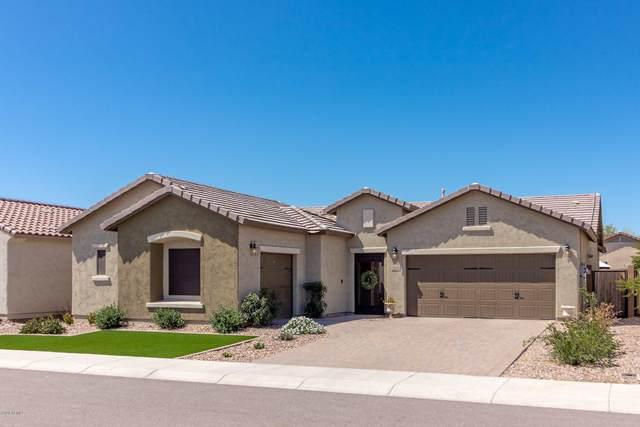 2248 N Petersburg Drive, Florence, AZ 85132 (MLS #6061404) :: Yost Realty Group at RE/MAX Casa Grande