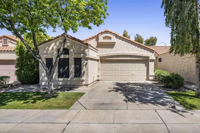 3440 E Southern Avenue #1099, Mesa, AZ 85204 (MLS #6061443) :: Yost Realty Group at RE/MAX Casa Grande