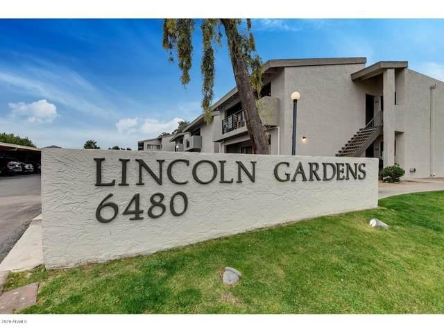6480 N 82ND Street #2224, Scottsdale, AZ 85250 (MLS #6061450) :: Nate Martinez Team