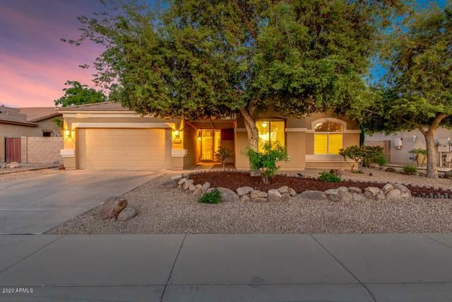 16061 N 164th Lane, Surprise, AZ 85388 (MLS #6061456) :: Conway Real Estate