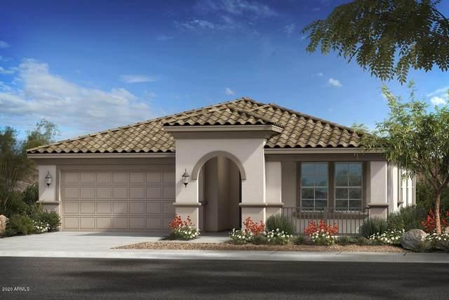 8114 W Sands Road, Glendale, AZ 85303 (MLS #6061472) :: Howe Realty