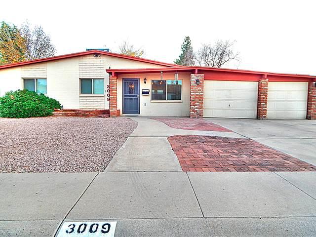 3009 E Corrine Drive, Phoenix, AZ 85032 (MLS #6061475) :: Nate Martinez Team