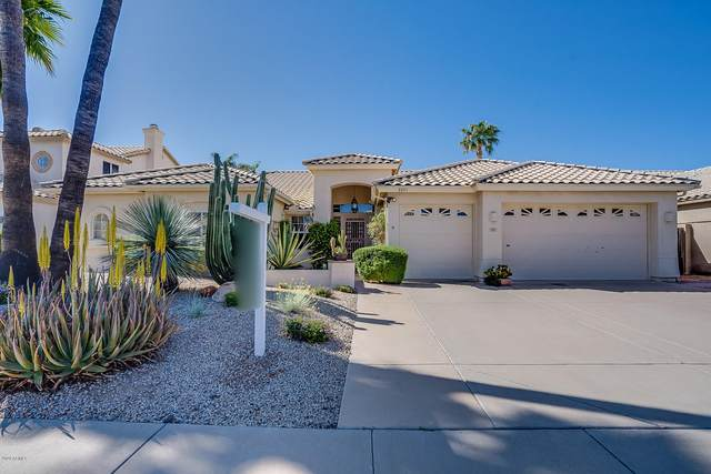 8953 E Captain Dreyfus Avenue, Scottsdale, AZ 85260 (MLS #6061477) :: Nate Martinez Team