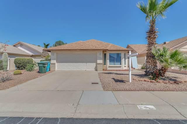 1736 E Bluefield Avenue, Phoenix, AZ 85022 (MLS #6061497) :: The Property Partners at eXp Realty