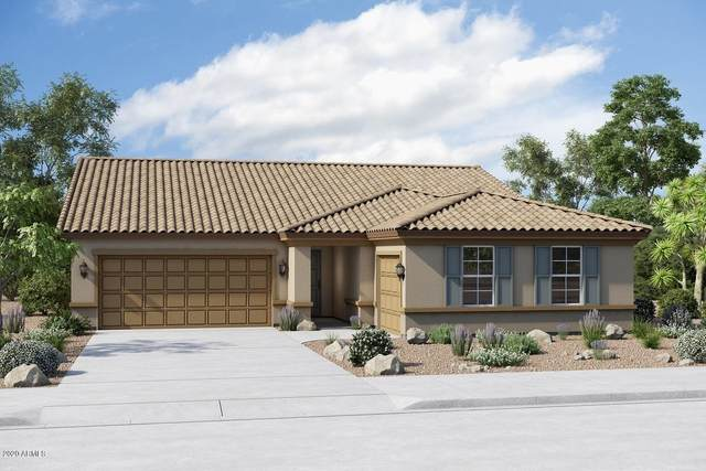 19807 W Flower Street, Buckeye, AZ 85396 (MLS #6061513) :: The W Group