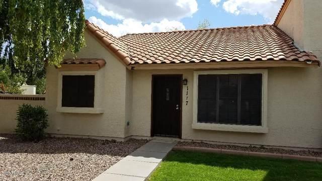 921 W University Drive #1177, Mesa, AZ 85201 (MLS #6061520) :: Revelation Real Estate
