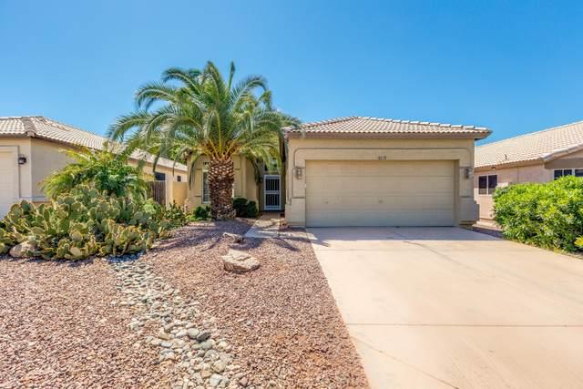 6719 E Northridge Street, Mesa, AZ 85215 (MLS #6061527) :: Revelation Real Estate