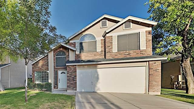 247 S Rush Circle W, Chandler, AZ 85226 (MLS #6061580) :: Kepple Real Estate Group