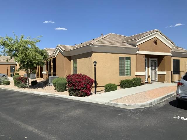 854 S San Marcos Drive, Apache Junction, AZ 85120 (MLS #6061601) :: Revelation Real Estate