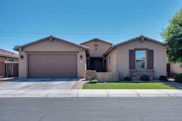 1135 W Fir Tree Road W, San Tan Valley, AZ 85140 (MLS #6061607) :: Yost Realty Group at RE/MAX Casa Grande
