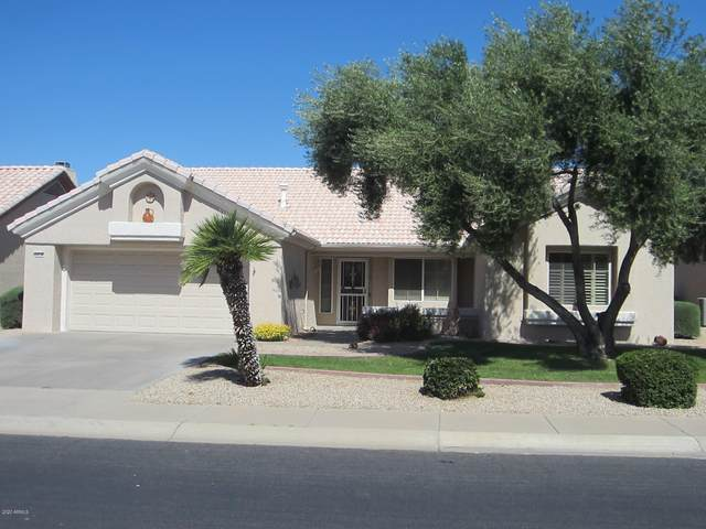14114 W Sky Hawk Drive, Sun City West, AZ 85375 (MLS #6061611) :: The Laughton Team
