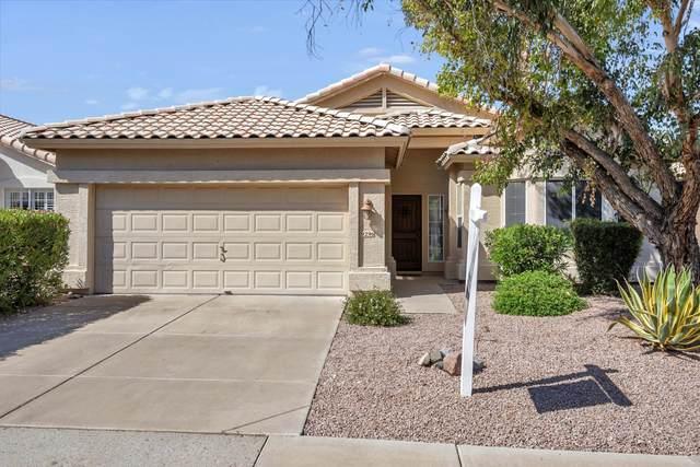 9296 E Blanche Drive, Scottsdale, AZ 85260 (MLS #6061686) :: Brett Tanner Home Selling Team