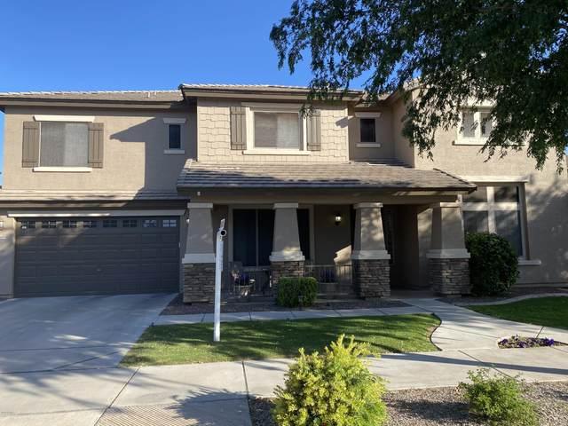 18694 E Cardinal Way, Queen Creek, AZ 85142 (MLS #6061703) :: Conway Real Estate