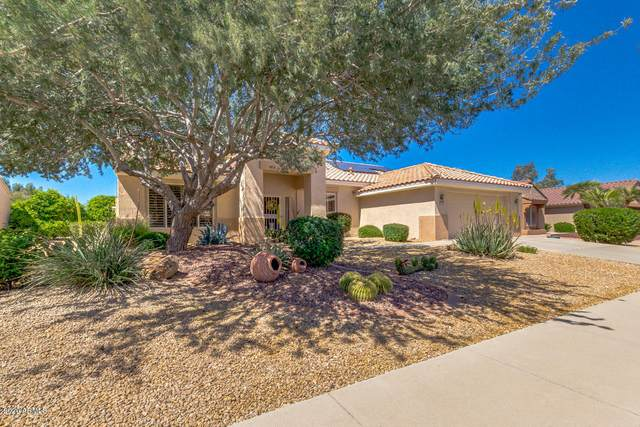 22514 N Sonora Lane, Sun City West, AZ 85375 (MLS #6061706) :: Brett Tanner Home Selling Team