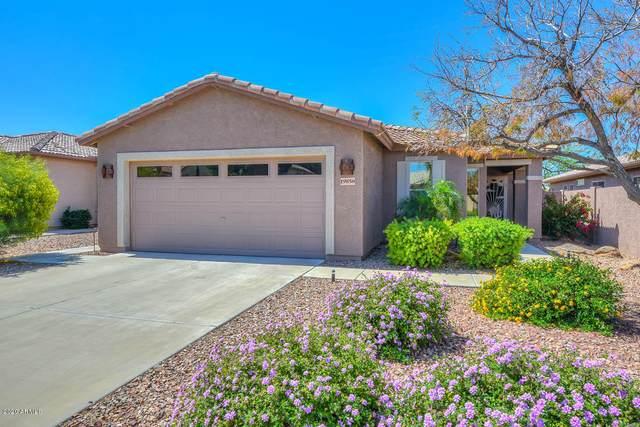 19858 N 108th Avenue, Sun City, AZ 85373 (MLS #6061727) :: Riddle Realty Group - Keller Williams Arizona Realty