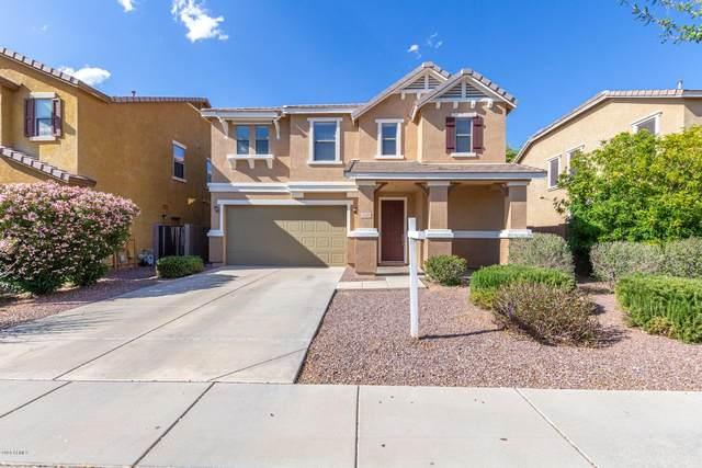 3528 E Terrace Avenue, Gilbert, AZ 85234 (MLS #6061738) :: Kepple Real Estate Group