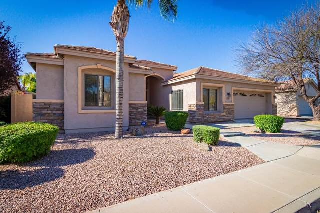 323 W Canary Way, Chandler, AZ 85286 (MLS #6061757) :: Kepple Real Estate Group