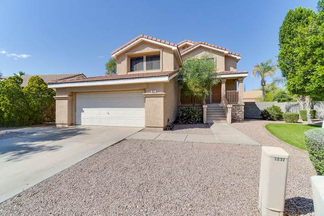902 W Hudson Way, Gilbert, AZ 85233 (MLS #6061763) :: The Laughton Team