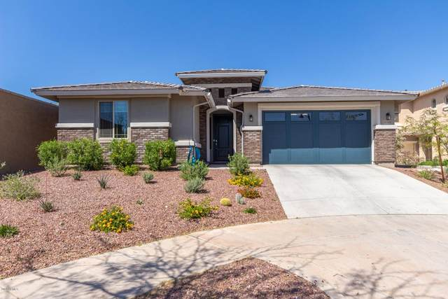 20768 W Sunrise Court, Buckeye, AZ 85396 (MLS #6061785) :: The W Group