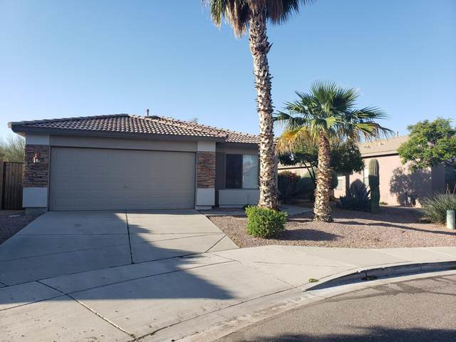 33240 N Cat Hills Avenue, Queen Creek, AZ 85142 (MLS #6061813) :: Kepple Real Estate Group