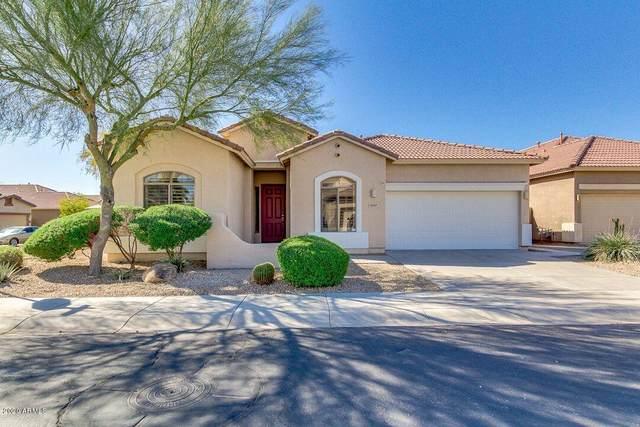 5517 W Maldonado Road, Laveen, AZ 85339 (MLS #6061818) :: Conway Real Estate