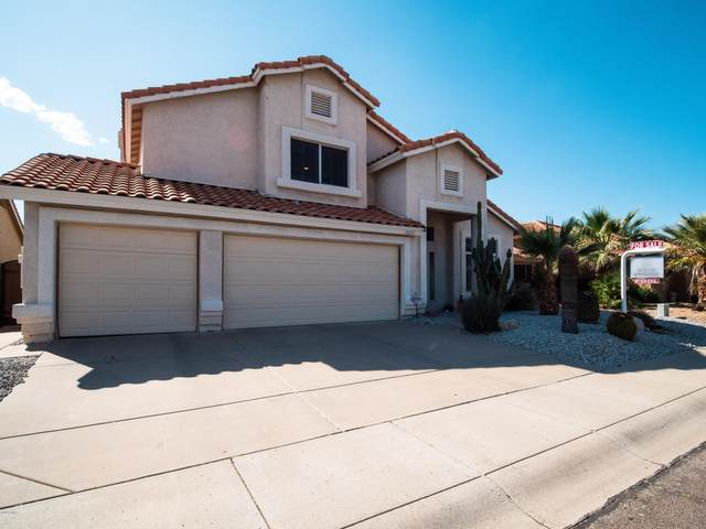 18420 N 46TH Way, Phoenix, AZ 85032 (MLS #6061823) :: The Property Partners at eXp Realty