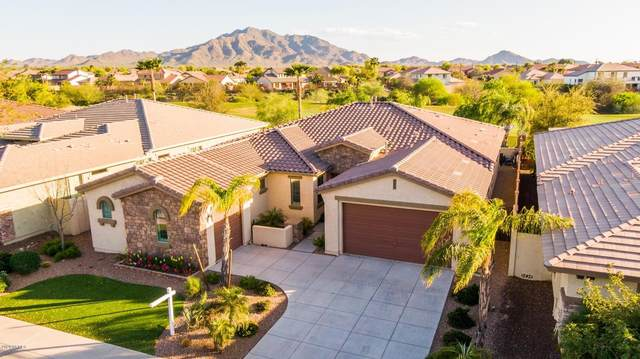 3557 E Sports Drive, Gilbert, AZ 85298 (MLS #6061830) :: The Laughton Team