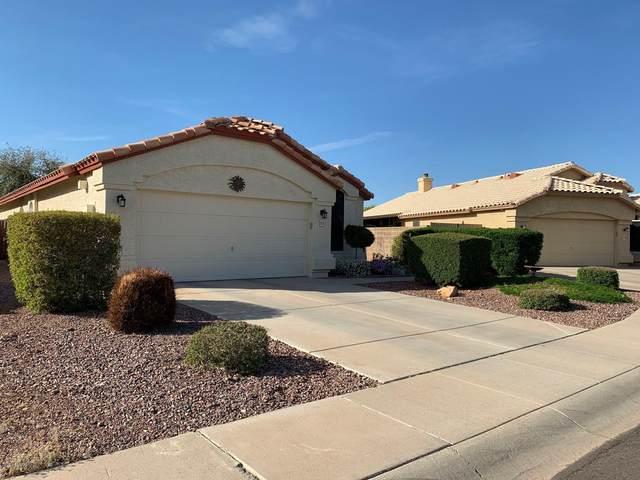 15802 N 90TH Avenue, Peoria, AZ 85382 (MLS #6061836) :: Kepple Real Estate Group