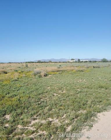 338XXX W Durango Street, Tonopah, AZ 85354 (MLS #6061837) :: The Results Group