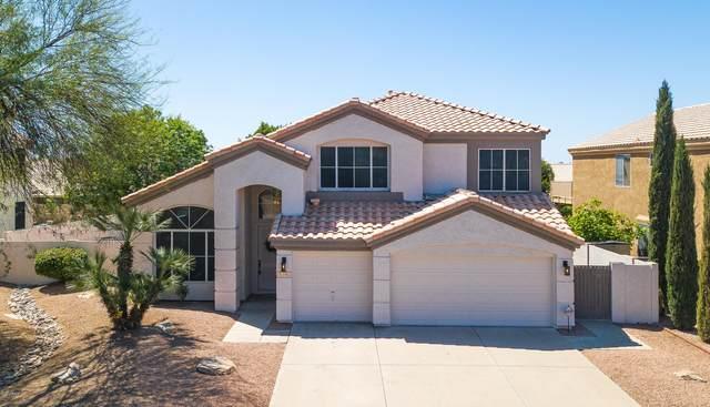 7121 E Medina Avenue, Mesa, AZ 85209 (MLS #6061850) :: Nate Martinez Team