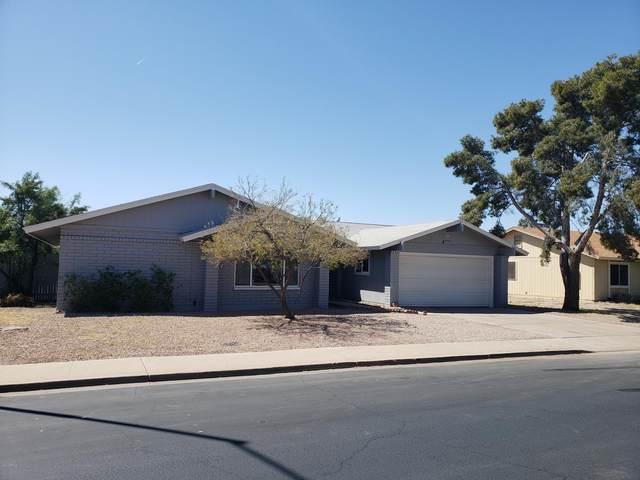 2909 E Coralbell Avenue, Mesa, AZ 85204 (MLS #6061867) :: Kepple Real Estate Group