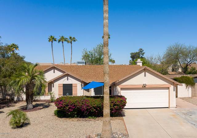 8250 N 31ST Lane, Phoenix, AZ 85051 (MLS #6061869) :: Devor Real Estate Associates