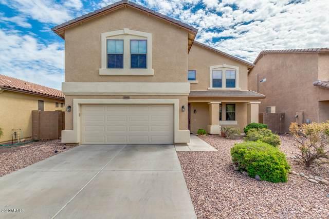 21903 N 120TH Avenue, Sun City, AZ 85373 (MLS #6061905) :: Lucido Agency