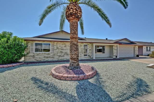 9507 W Appaloosa Drive, Sun City, AZ 85373 (MLS #6061913) :: Scott Gaertner Group