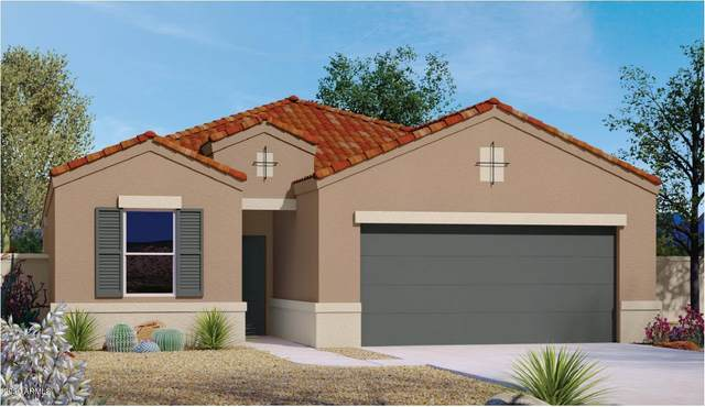 2412 E San Borja Trail, Casa Grande, AZ 85194 (MLS #6061922) :: Lux Home Group at  Keller Williams Realty Phoenix